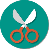 Screen Scissors