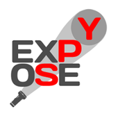 Expose Spy (Spyfall)