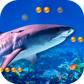 3D Angry Shark  Latest Version Download