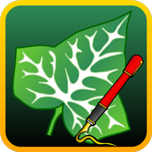 Ivy Draw: Vector Drawing APK v1.32 (479)