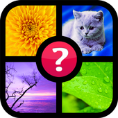 Guess the word ~ 4 pics 1 word APK v1.8 (479)