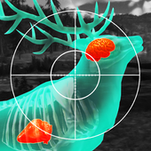 Wild Hunt:Sport Hunting Games. Hunter & Shooter 3D For PC