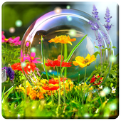 HD Nature Wallpapers  APK 1.1