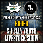 PCSP Rodeo For PC