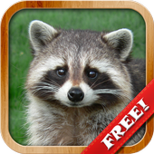 Animals for Kids, Planet Earth Animal Sounds Latest Version Download