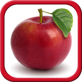 Fruits and Vegetables for Kids 7.6.1 Latest Version Download