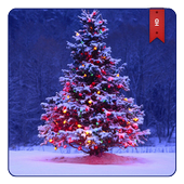 Christmas Wallpapers HD  APK 1.0.0