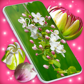 3D Blossoms Live Wallpaper APK 5.6.1
