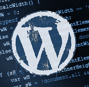 php in WordPress