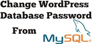 Changing the Database user Password in WordPress