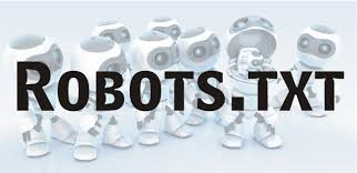 The Robots.txt file in WordPress