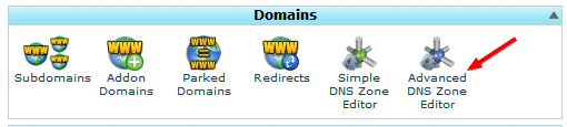 DNS records in cPanel