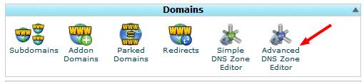 DNS records in cPanel