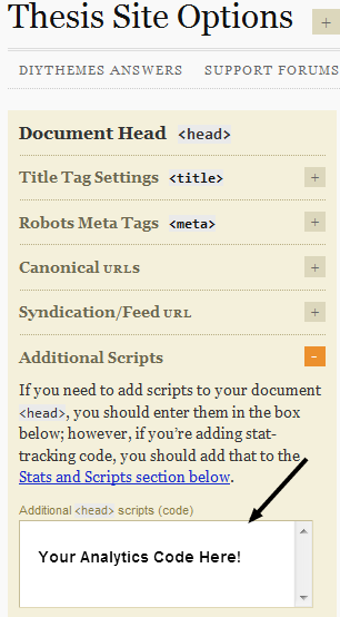 Site Options Additional Scripts in Thesis verifying Google Analytics