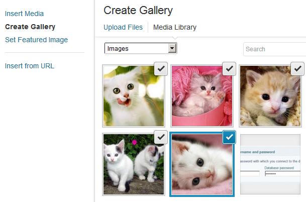 Image zoom inside of galleries in WordPress
