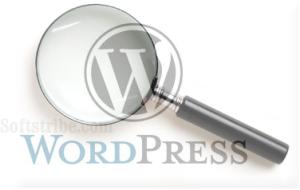 Jquery Image Zooming WordPress Plugins