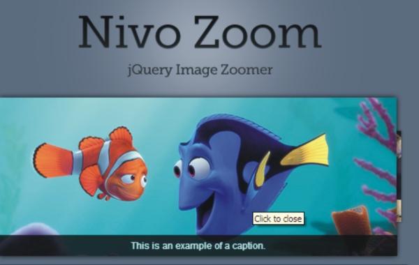 Nivo Jquery Zoom
