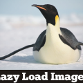 Plugins to Lazy Load Images in WordPress