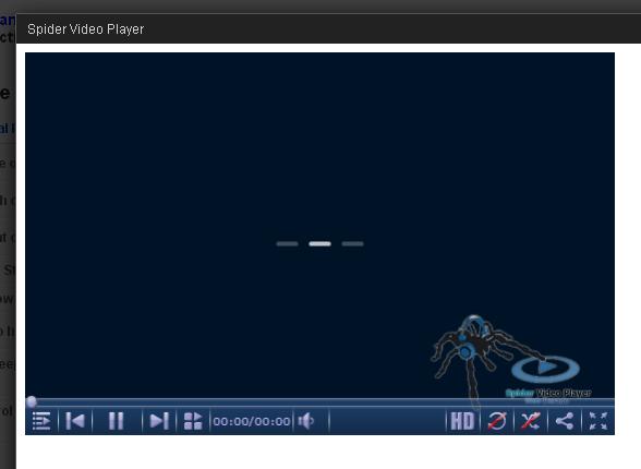 WordPress Spider Video Player