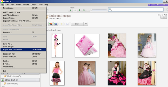 Export pictures to folder picasa