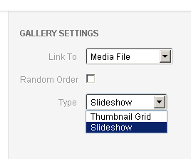 Set the type of Gallery in WordPress copy