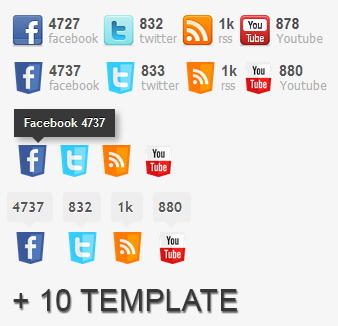 My Social Counter for WordPress