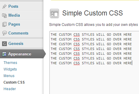 Simple Custom CSS WordPress Plugin Settings page