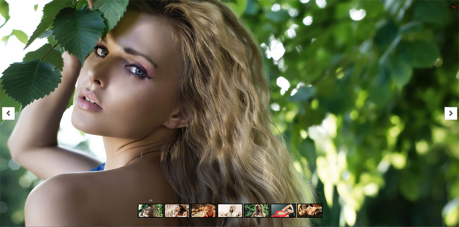 Zoom In and Out Effect Sliders Full Collection WordPress Plugin