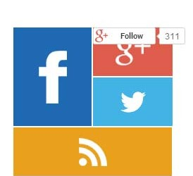 metro style social followers count widget wordpress