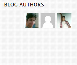 Blog Authors widget Demo