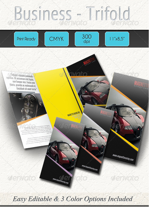 Professional Business Trifold