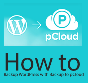 How to Backup All WordPress Files and Database with Backup to pCloud