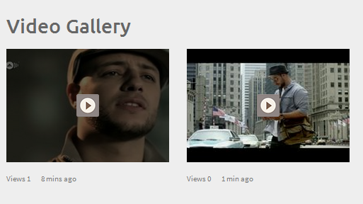 Video Gallery in WordPress