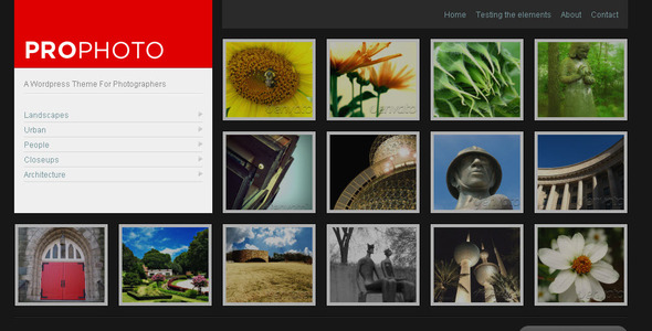 WP ProPhoto - A WordPress Theme For Photographers