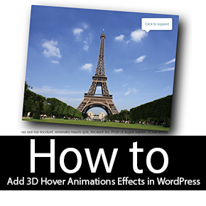 3D Hover Animations Effects on Images in WordPress Thumbnail