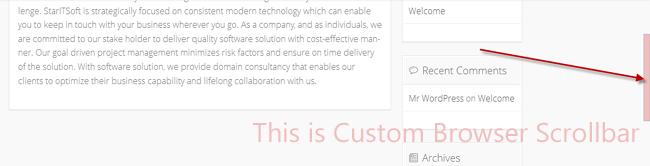 What is Custom Browser Scrollbar