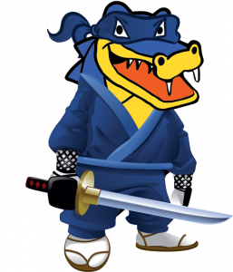 HostGator Ninja Web Hosting