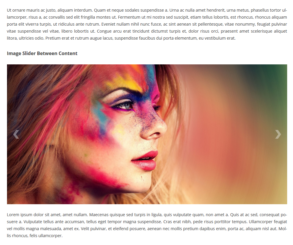 Ultimate Responsive Image Slider screenshot 2