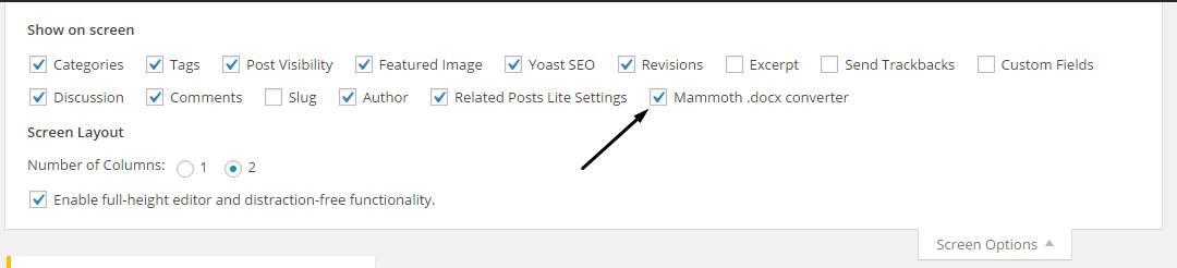 WordPress screen options check Mammoth docx converter